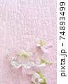 早春の桜の花のクローズアップ 74893499