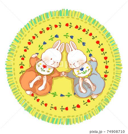 双子のうさぎの赤ちゃん 74908710