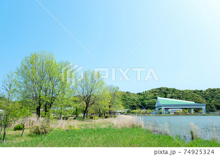 新緑・初夏の公園 サイクリングのイメージ(東郷池) 74925324