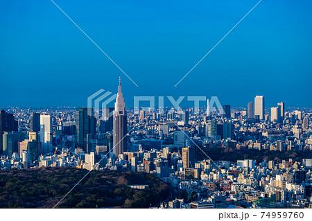 東京都渋谷区から見た東京の都市景観 74959760
