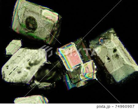 グラニュー糖3(100倍)の顕微鏡写真 74960907