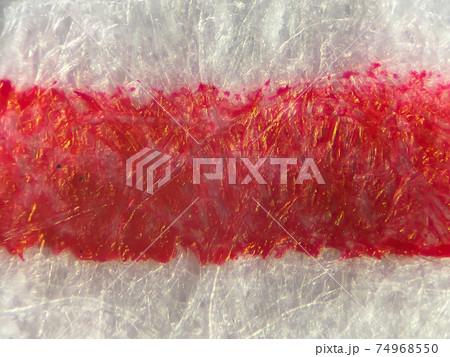ボールペンで赤い線を書いた紙の顕微鏡写真 74968550
