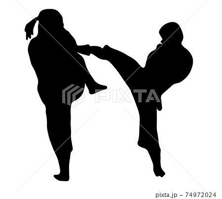 かっこいい少林寺拳法のシルエット 74972024