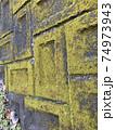 幾何学的苔壁 74973943