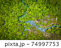 Aerial view image of Tha Pom Klong Song Nam mangrove forest or Emerald pool is unseen pool in mangrove forest at Krabi, Thailand 74997753