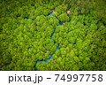 Aerial view image of Tha Pom Klong Song Nam mangrove forest or Emerald pool is unseen pool in mangrove forest at Krabi, Thailand 74997758