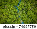 Aerial view image of Tha Pom Klong Song Nam mangrove forest or Emerald pool is unseen pool in mangrove forest at Krabi, Thailand 74997759