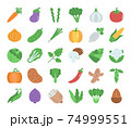 Vegetable Flat Vector Icons 74999551