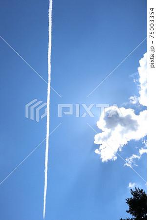 飛行機雲 見上げる 青空 眩しい 75003354