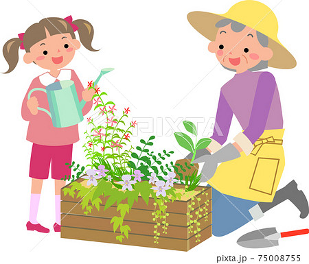 寄せ植えをつくるおばあちゃんと女の子 75008755
