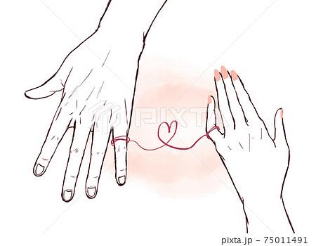 赤い糸で結ばれた男女の手 75011491
