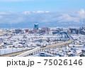 冬・雪の富山市街と立山連峰 75026146