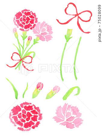 母の日のカーネーションの花束のイラスト 75028099