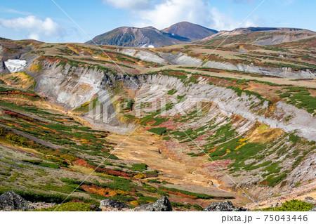 北海道・大雪山系の赤岳山頂で見た、山頂周辺の紅葉と万年雪のような雪が残る風景と青空 75043446