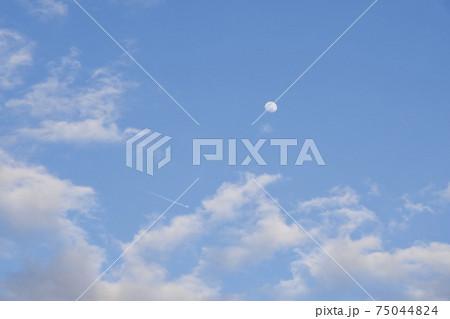 成田山公園に浮かぶ夕暮れ時の月と飛行機雲 75044824