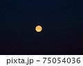 満月 75054036