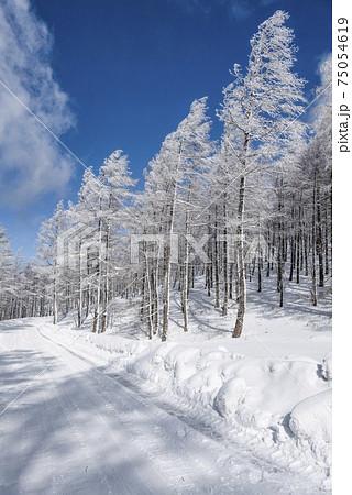 高原の雪景色 75054619