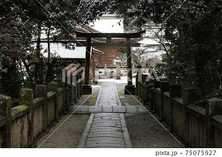 香川の冬景色、讃岐国二宮「大水上神社」参道 75075927