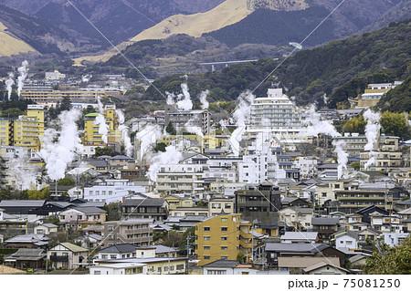 大分県別府市 鉄輪温泉 湯けむり展望台から見た美しい風景 75081250