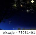 ローアングルの花火大会 75081401
