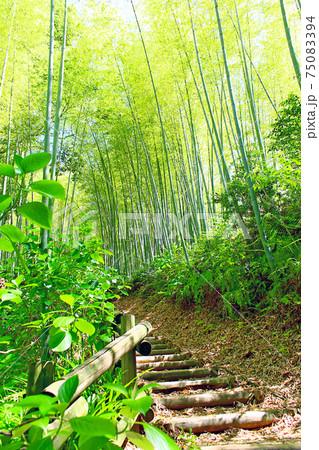 【奈良】初夏の明日香村 酒船石遺跡周辺の景色 75083394