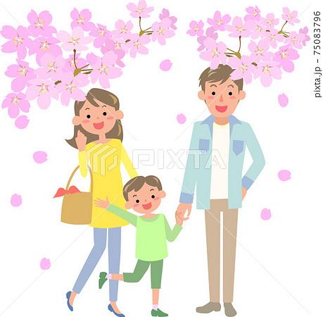 桜を見に出かけるファミリー 75083796