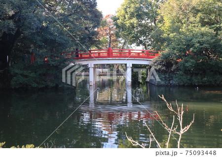 さいたま市武蔵一宮大宮氷川神社の赤い神橋 75093448