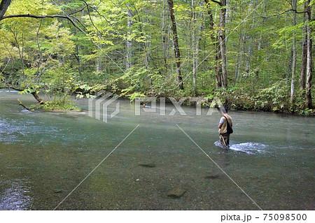 渓流の釣り人 75098500