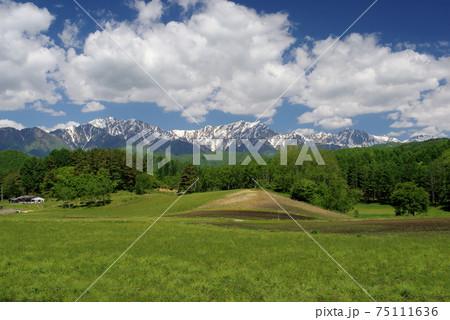信州新緑の中山高原からのぞむ仁科三山 75111636