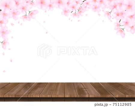 桜の花とウッドデッキの春の白バック背景素材イラスト 75112985