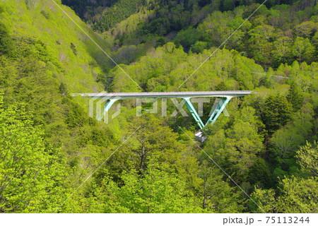 信州美ヶ原ビーナスライン落合橋の新緑鮮やか 75113244
