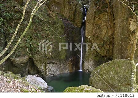 犬落の滝 百間山渓谷(和歌山県田辺市) 75118013