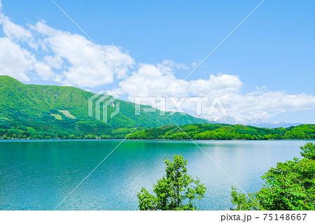 新緑の青木湖 75148667