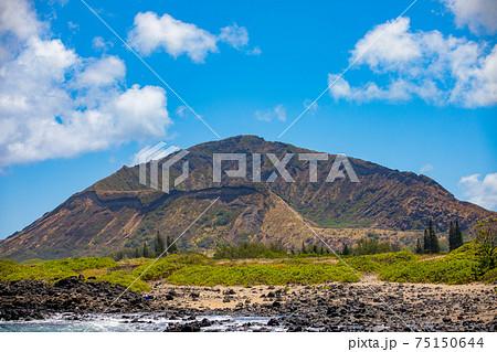 ハワイの自然 75150644