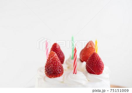 ケーキ 75151009