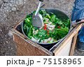 Woman Cooking Stir Fried Kale with Pork on the Simple Bonfire at Camping in Backyard. 75158965