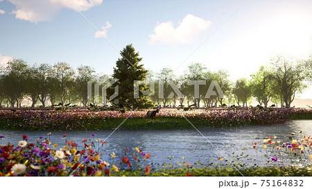 大自然の湖A 75164832