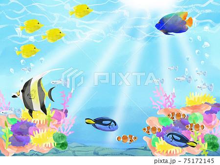 水彩風熱帯魚とサンゴ礁のイラスト 75172145