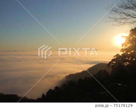 日本・栃木市の太平山から見た雲海 75176129