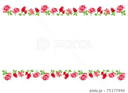 赤いバラの花のライン フレーム 背景素材 ポストカード 75177940