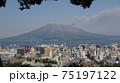 煙を上げる桜島 75197122