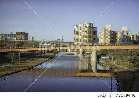 東京都江戸川区のさくら大橋と街並み 75199440