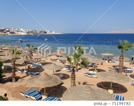 <エジプト>紅海とパラソルでいっぱいのビーチ 75199792