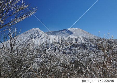 登山道から観る霧氷に覆われた韓国岳 75200696