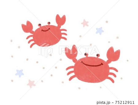 砂浜のカニ 手描きイラスト 75212911