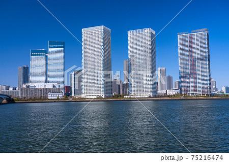 《東京都》晴海・都市風景《東京ベイエリア》 75216474