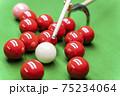 Snooker 75234064