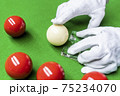 Snooker 75234070