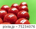 Snooker 75234076