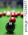 Snooker 75234077